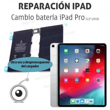 Cambio batería iPad Pro A1876