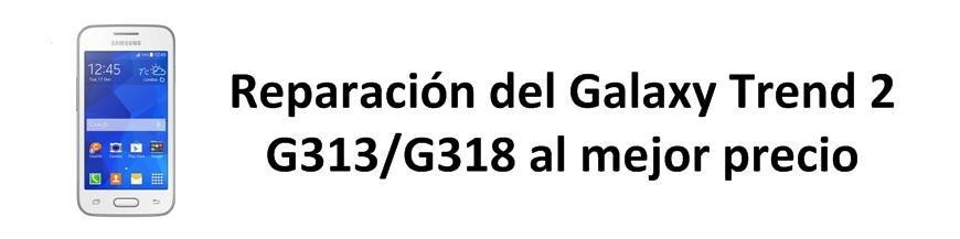 Galaxy Trend 2 G313/G318