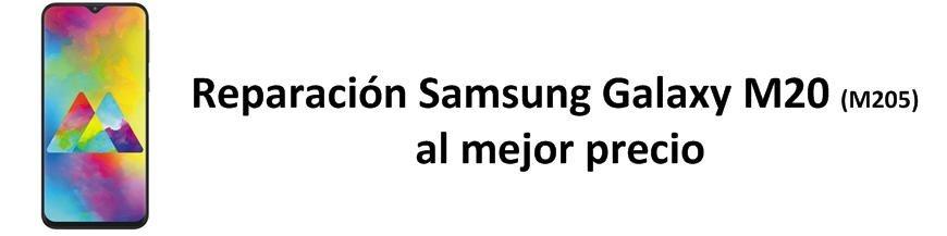 Galaxy M20 M205