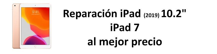 iPad (2019) 10.2 pulgadas / iPad 7