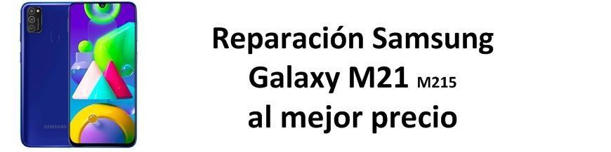 Galaxy M21 M215